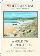 Vintage N. Ireland travel poster - Whitepark Bay